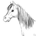 draw_horse_thumb